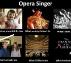 Opera Singer Meme by Mimi West, Founder, My Dream Teacher
